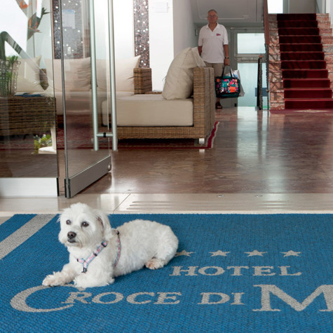 hotel jesolo with animals petfriendly with dogs and cats